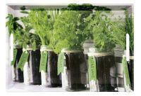 KESPER Serviertablett Herbs (77334)