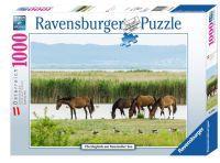 Ravensburger Pferdeglück am Neusiedlersee (89340)