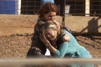 McLeods Töchter - Staffel 5 (8 DVDs)