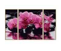 Malen nach Zahlen MNZ - Orchideen (Triptychon)