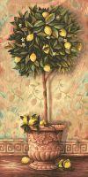 Malen nach Zahlen MNZ - Citrus Limonum
