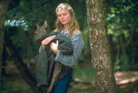 Die schönsten Kinderfilme (Krieg d.Knöpfe, Quill, Sarah u.d.Wildpferd) (3 DVDs)