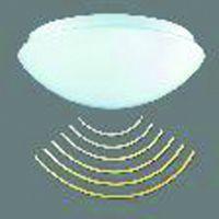 RZB Decken-/Wandleuchte mit integriertem HF-Präsenzmelder