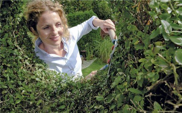 Gardena Baum & Strauchpflege