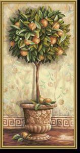 Malen nach Zahlen MNZ - Citrus aurantium